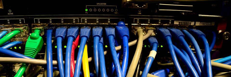 Câblage informatique pour bureaux