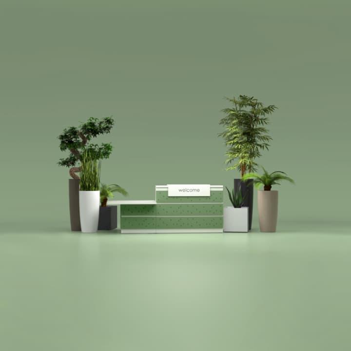 Végétalisation des bureaux